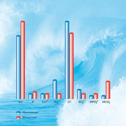 Warum Meerwasser
